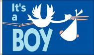 Its A Boy Stork Dyed Nylon Flag, 3 X 5