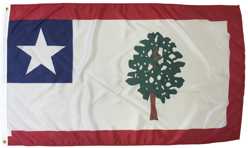 Mississippi MS State 1861 Civil War Flags