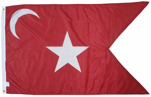 South Carolina SC Secession Guidon Civil War Flags