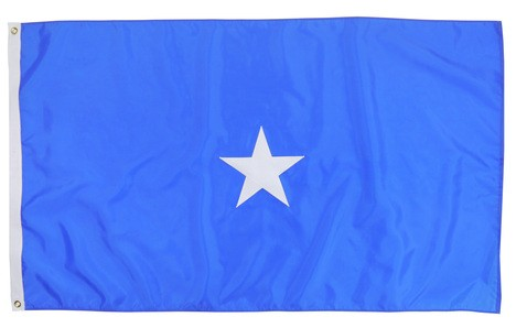 United States Air Force USAF Sewn Nylon Officers Flag