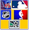 Professional Sports Team Flags